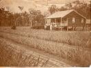 Sykes farm