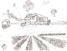 Sketch by Margaret Best of her farm in Beerburrum