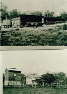 Tobacco curing barn and chicken pens, all built by Bert Evans, Beerburrum_1