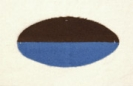43rd Battalion
