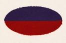 38th Battalion